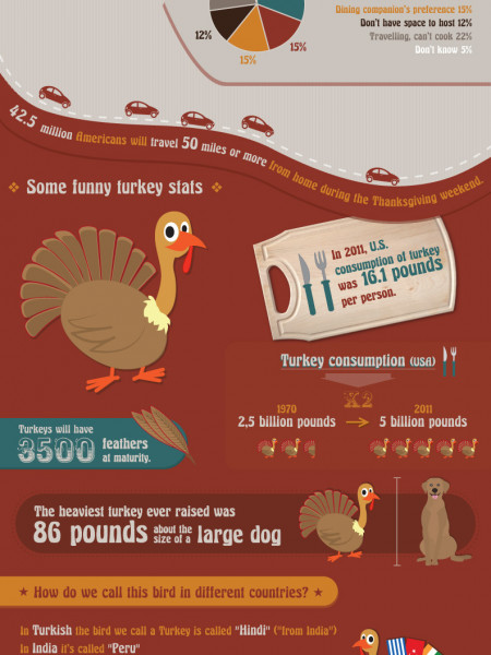Demystifying Thanksgiving Infographic