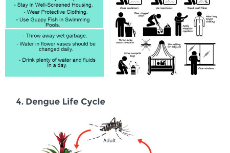 Dengue - Signs, Symptoms and Cure Infographic