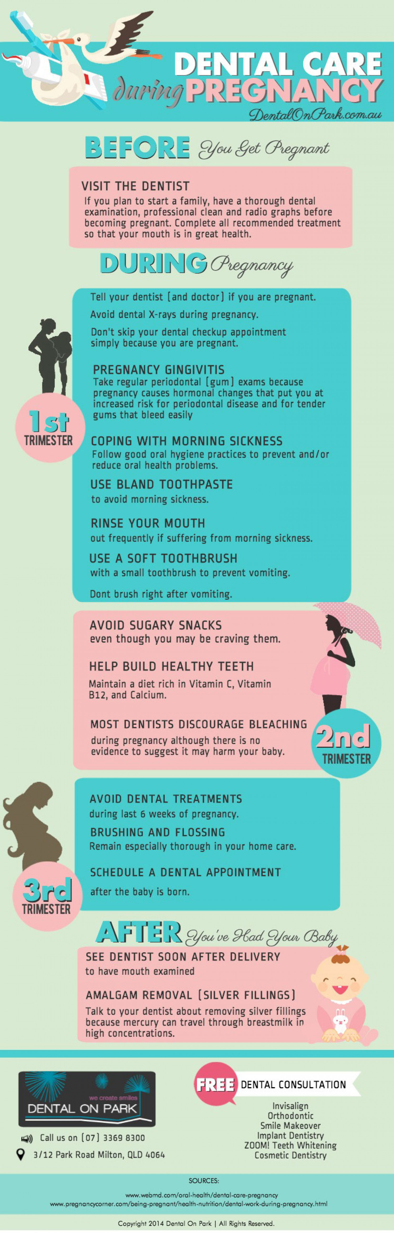 Dental Care During Pregnancy Infographic