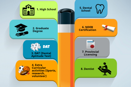 Dental Career Pathway in Canada Infographic