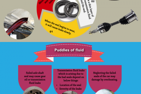 Determine the Failed Axle Shaft Seal in the Car Infographic