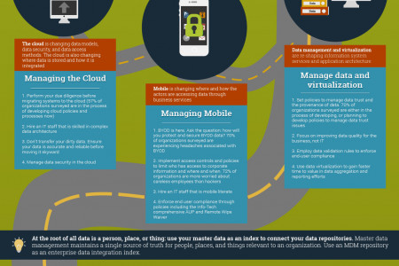 Develop a Five Year Data Architecture Plan Infographic