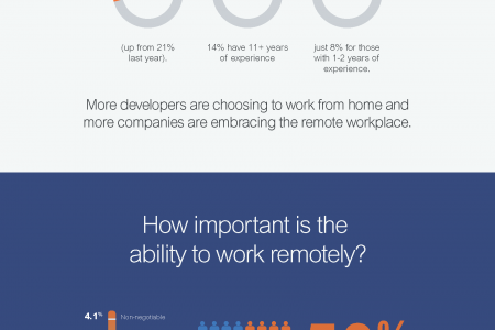Developers and Remote Working Infographic