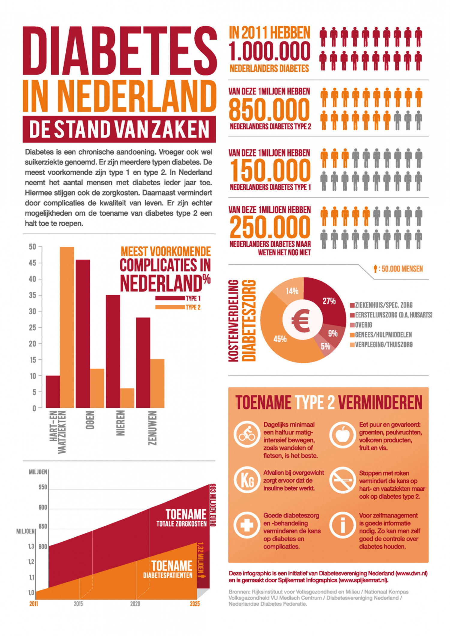 DIABETES IN THE NETHERLANDS Infographic