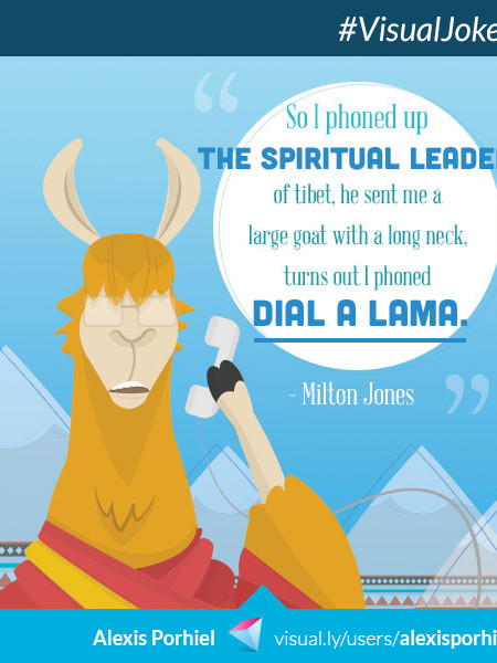 Dial A Lama Infographic