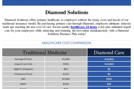 Diamond Solutions Business Plan Infographic