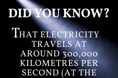Did You Know? Infographic