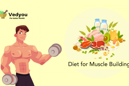 Diet for Muscle Building Infographic
