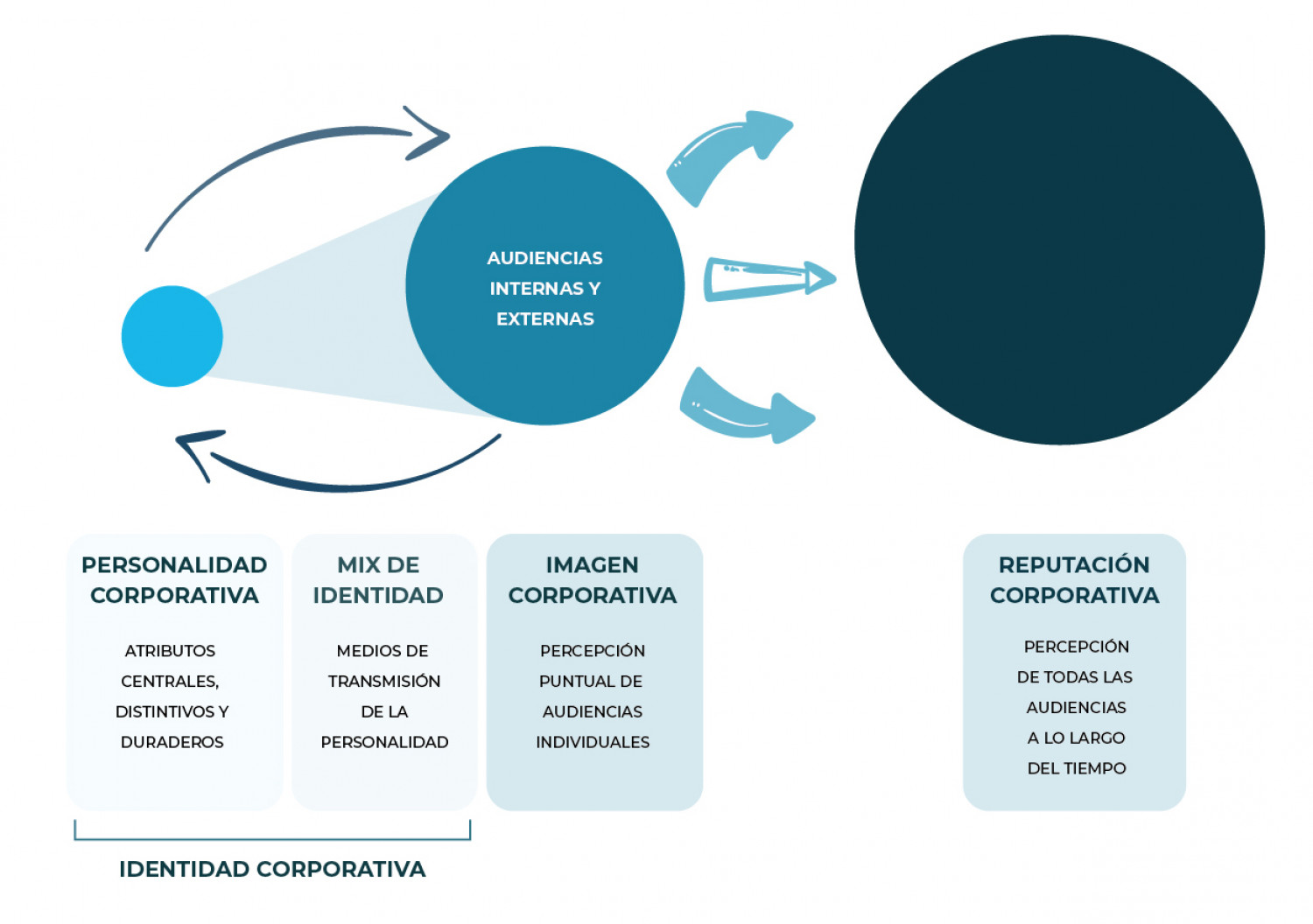 Difference and Relation between Corporate Identity, Image and Reputation Infographic