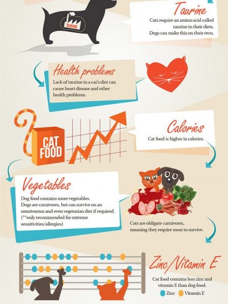 Dogs and Cats are Different and Require Different Nutrients Infographic