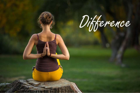 Difference Between Hatha Yoga and Ashtanga Yoga  Infographic