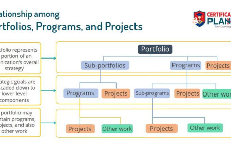 Difference between Portfolio, Program and Projects Infographic