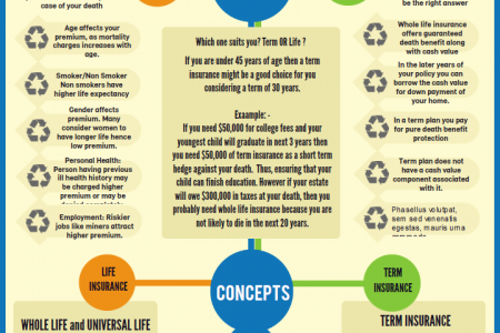 Difference Between Term And Whole Life Insurance Infographic
