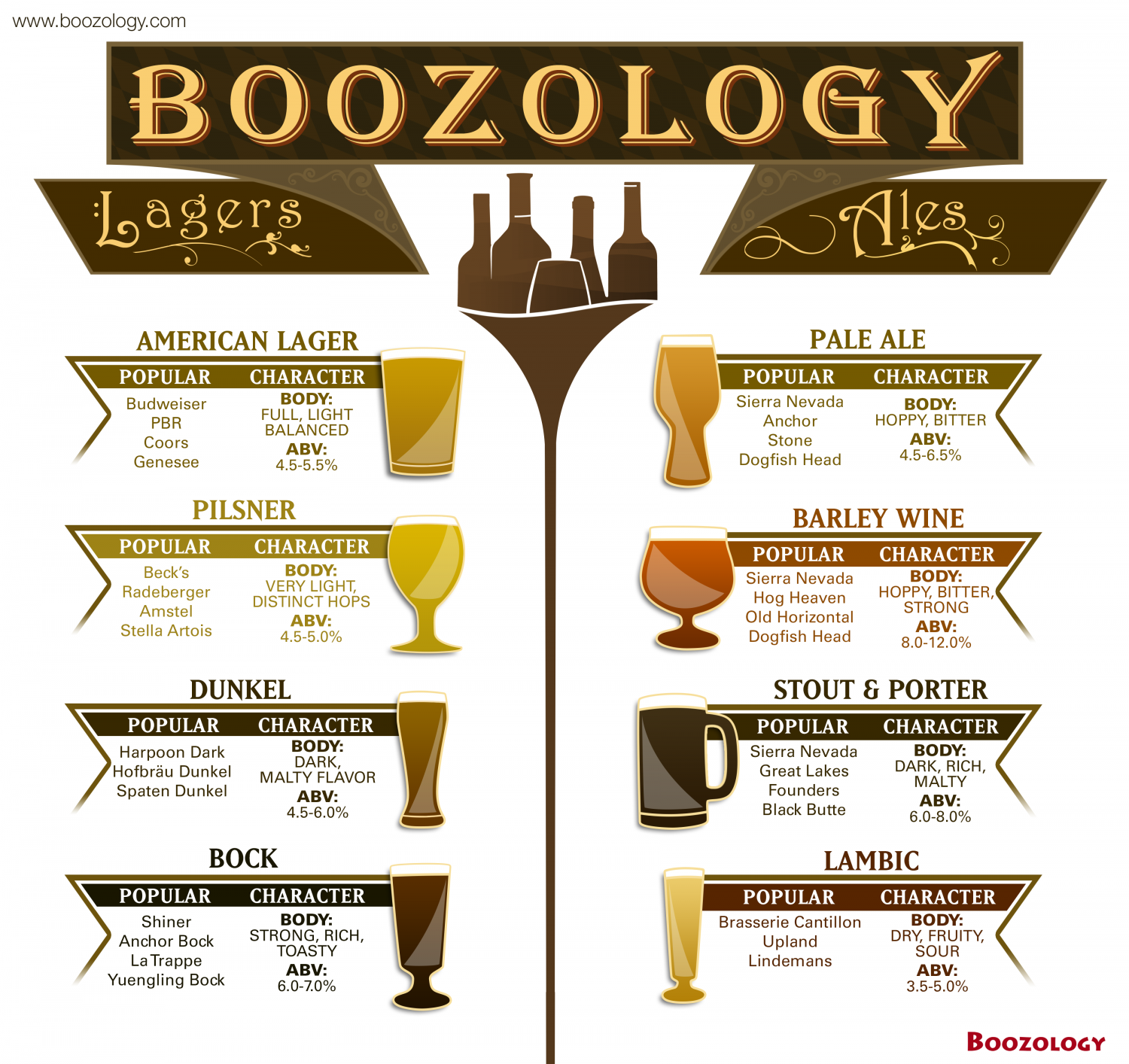Different Types Of Beer (Beer 101) Infographic