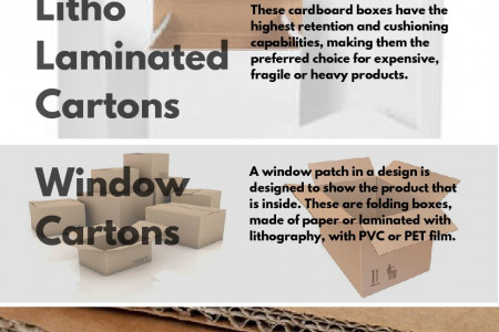 Different Types of Carton Packaging  Infographic