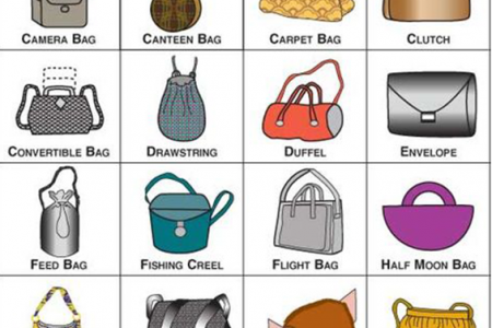 Different Types of Handbags Infographic