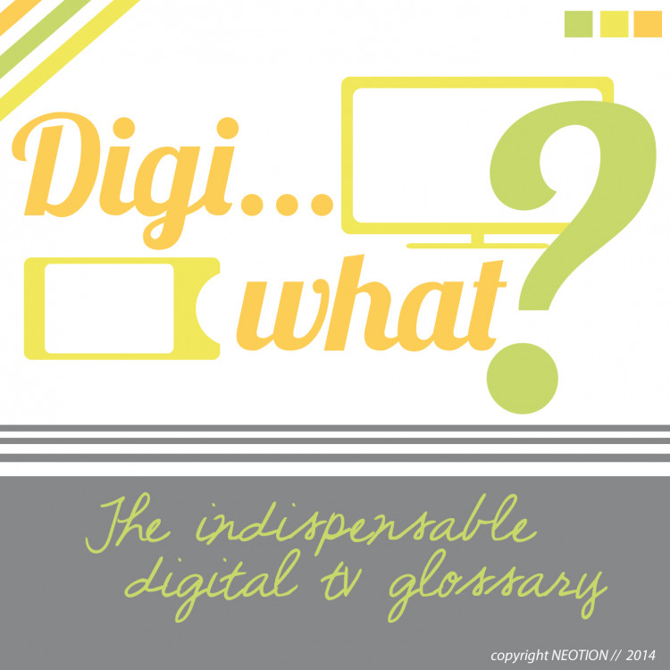 Digi    What? The Indispensable Digital TV Glossary | Visual ly