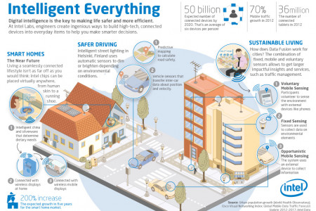 Digital intelligence in everyday life Infographic