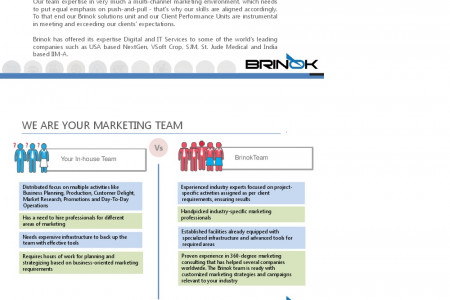 Digital Marketing Agency Consulting and Strategy Infographic