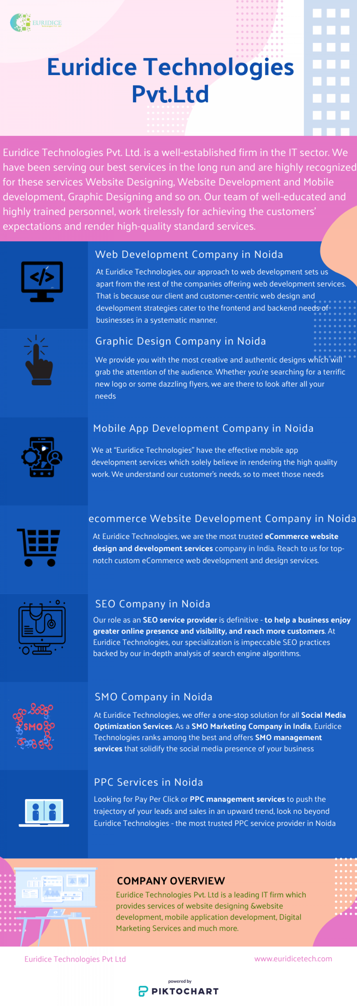 Digital Marketing and web development company in Noida Infographic
