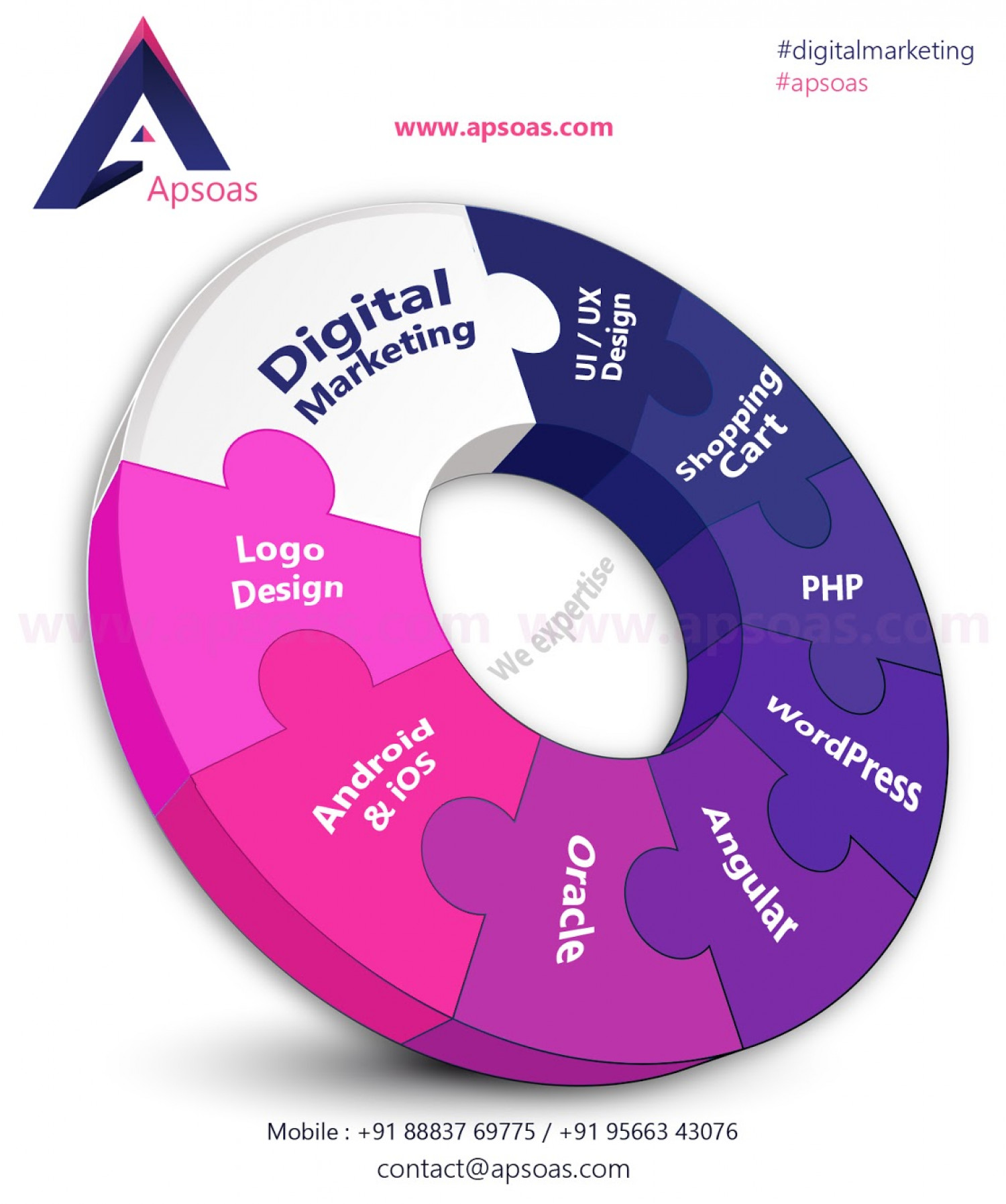 Digital Marketing and Web Development Services Infographic