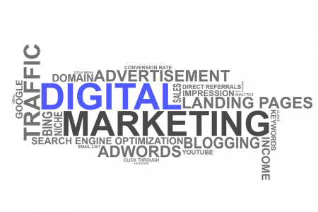 Digital Marketing Company in Delhi Infographic