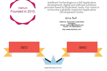 Digital Marketing in Hyderabad Infographic