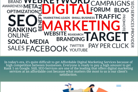 Digital marketing services for small business | SEO Services Infographic