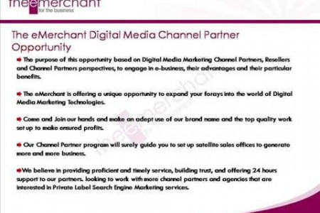 Digital Media Franchise Opportunity - The e-Merchant Infographic