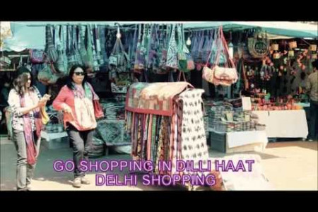 Dilli Haat Shopping Market, Delhi - Best Place for Shopping in Delhi Infographic