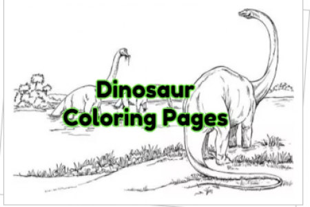 Dinosaur Coloring Pages Infographic