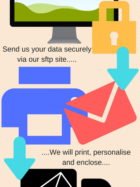 Direct mail Infographic