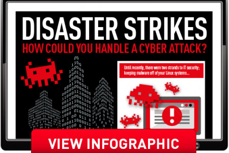 Disaster Strikes - How Could You Handle a Cyber Attack? Infographic