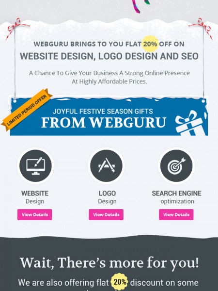 Discount Offer on Web Services for Christmas and New Year  Infographic