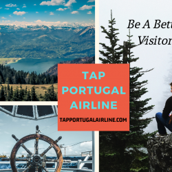 Discover every nook of Europe on a budget with Tap Portugal  | Visual.ly