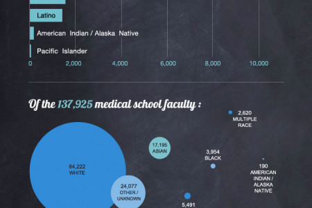 Diversity in Medical Schools Infographic
