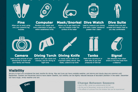 Diving in the Maldives Infographic