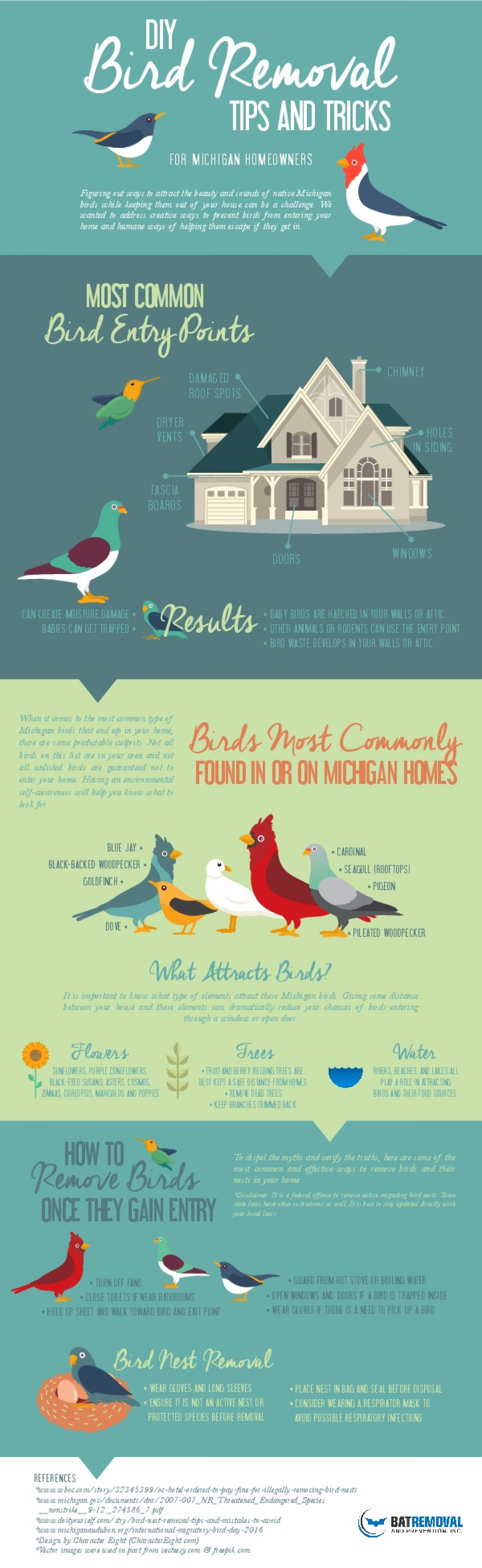 DIY Bird Removal Tips & Tricks Infographic