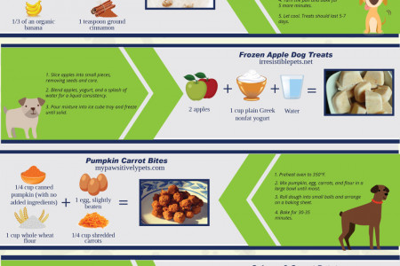 DIY Dog Treat Recipes Infographic