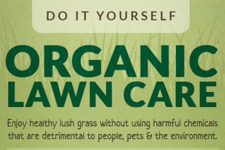 DIY Organic Lawn Care Infographic