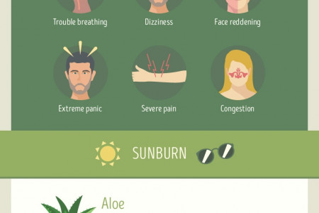 DIY Remedies for Stings, Bites, Scratches, and Sunburns Infographic