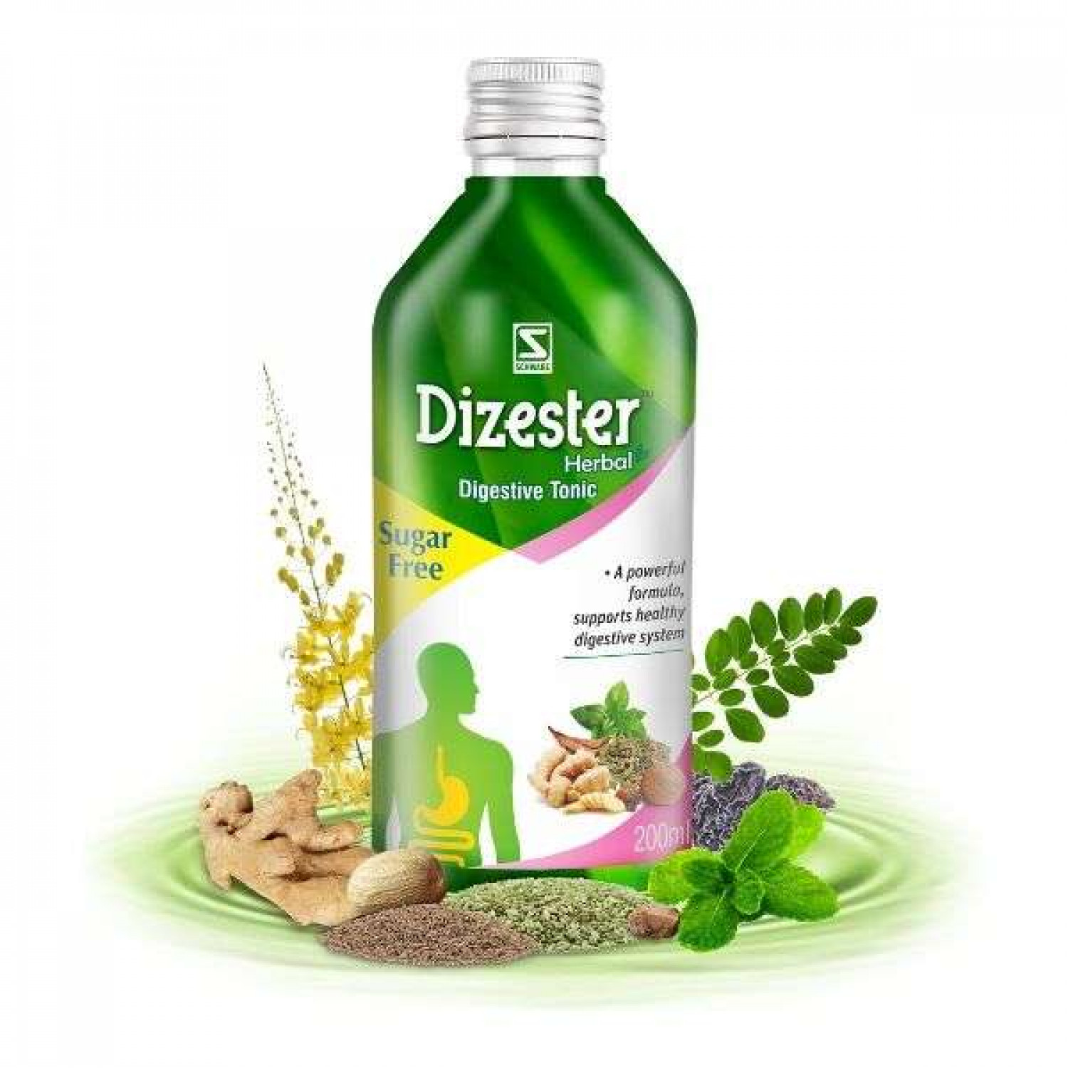 Dizester Herbal - Digestive Tonic - Schwabe India Infographic