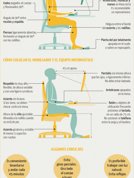 Do you sit down in front of your computer in the right way? Infographic