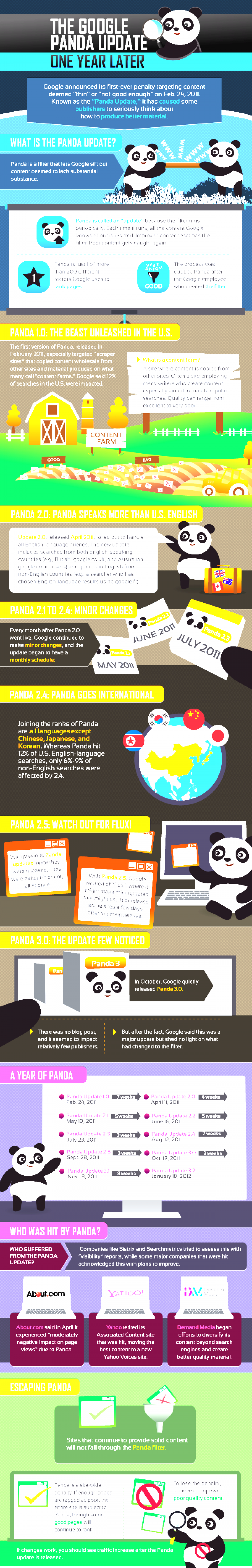Do You want To Know About What Is Google Panda Update By EBriks Infotech Infographic