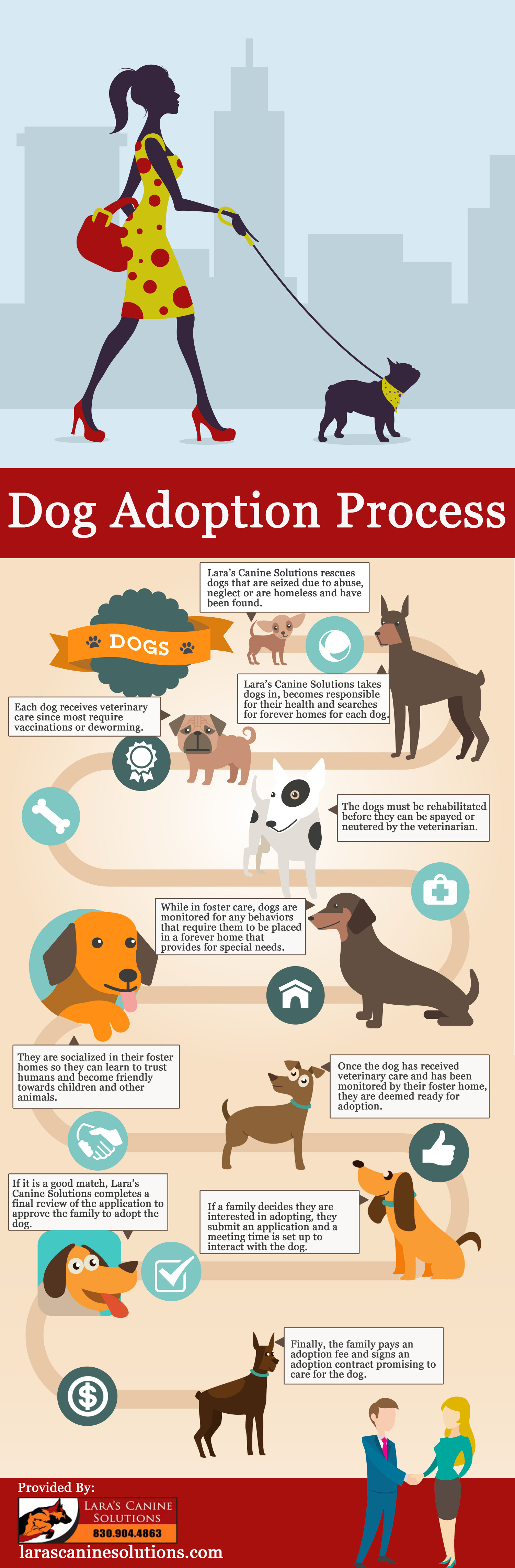 Dog Adoption Process