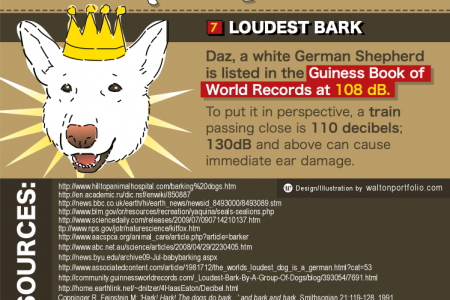 Dog Bark Facts Infographic