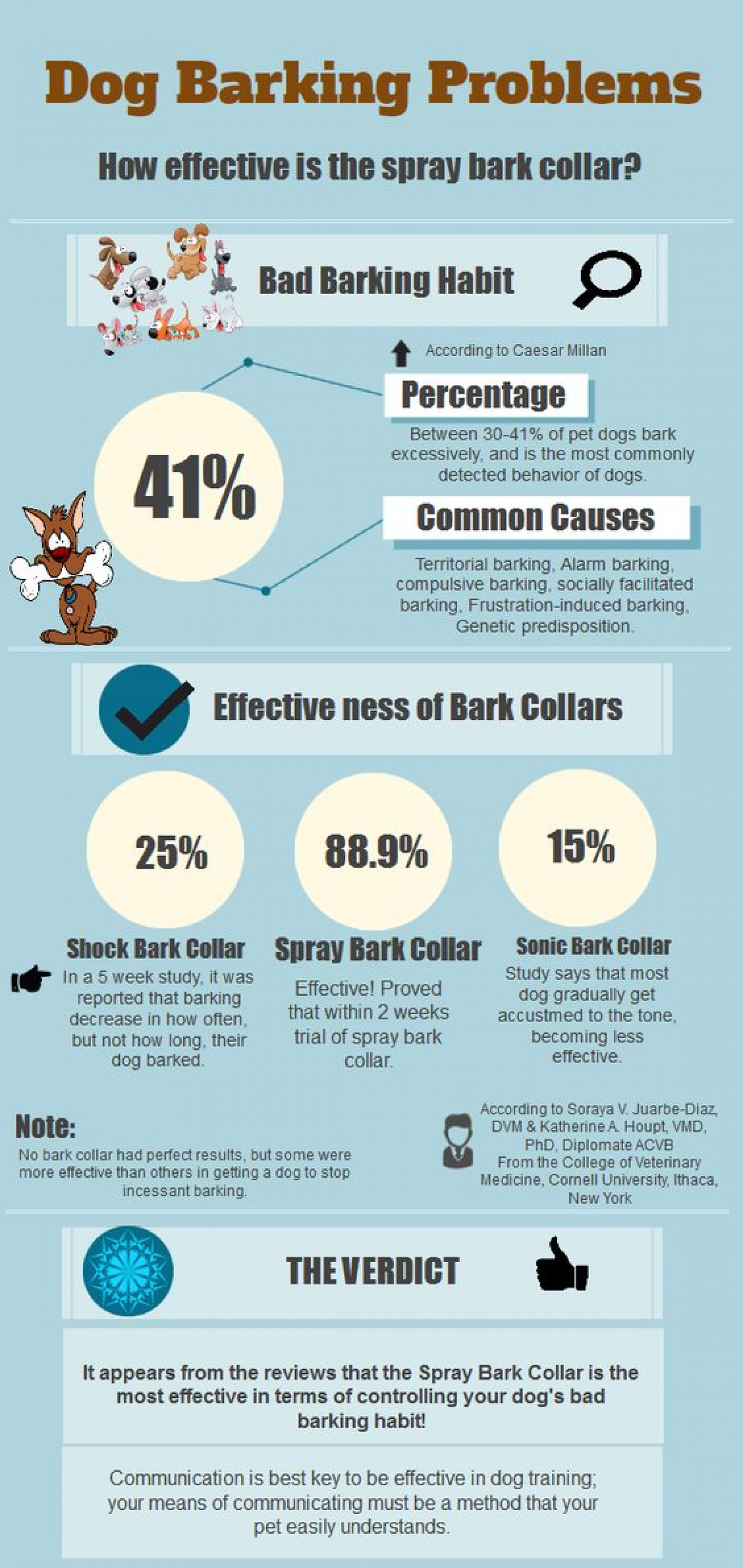 Dog Barking Problems & Solutions Infographic