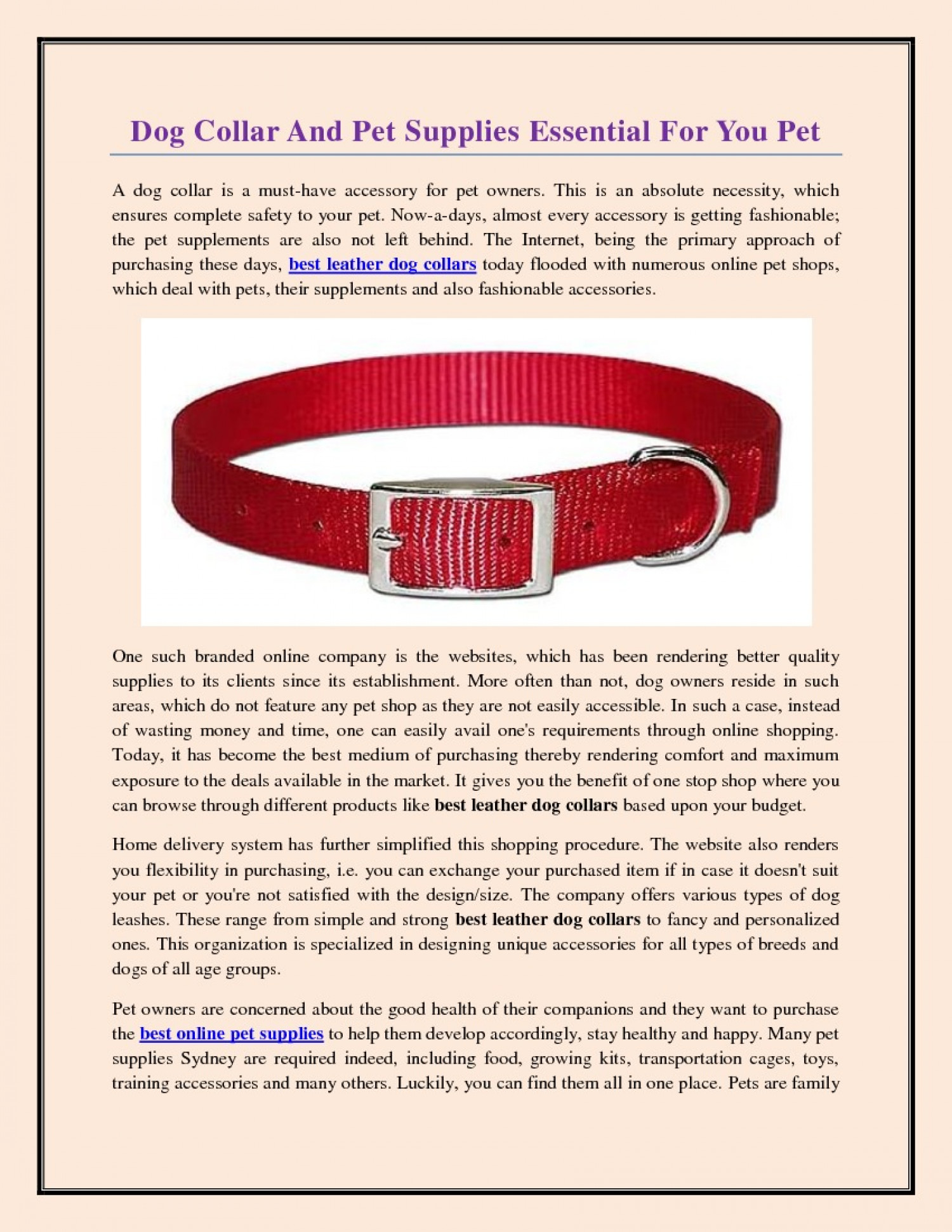 Dog Collar And Pet Supplies Essential For You Pet Infographic