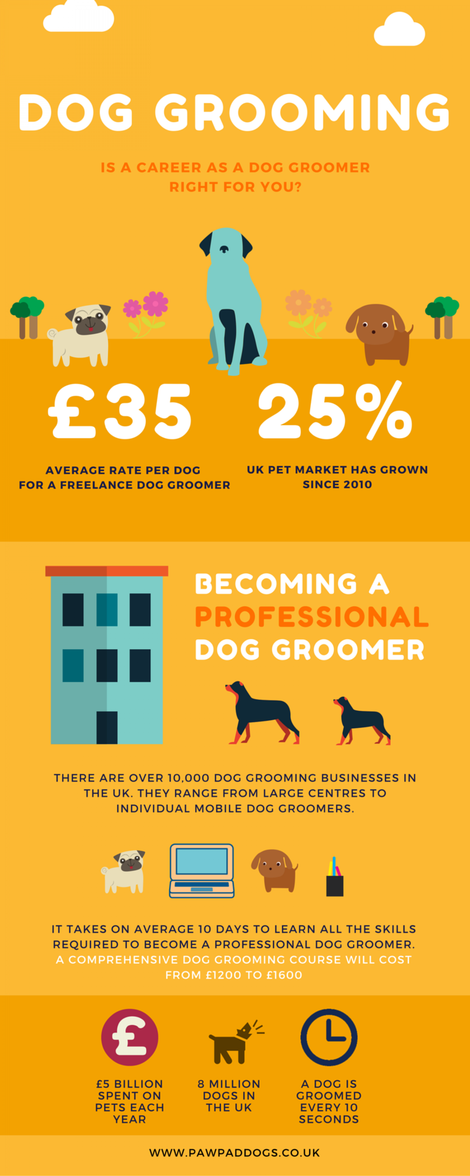 Dog grooming courses visual dog grooming courses infographic xflitez Image collections