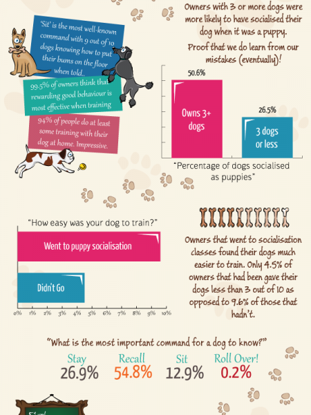 Dog Training Facts and Figures Infographic